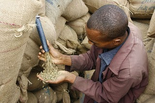 Ethiopia is the world's fifth largest coffee producer and Africa's top producer.