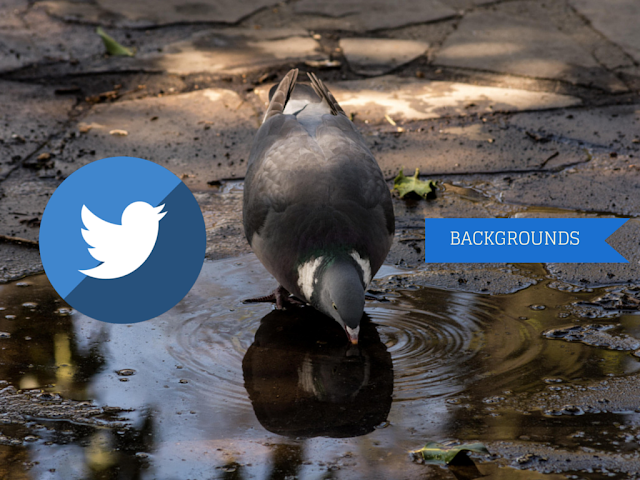Best Twitter Background Sites to download free high quality twitter header pictures