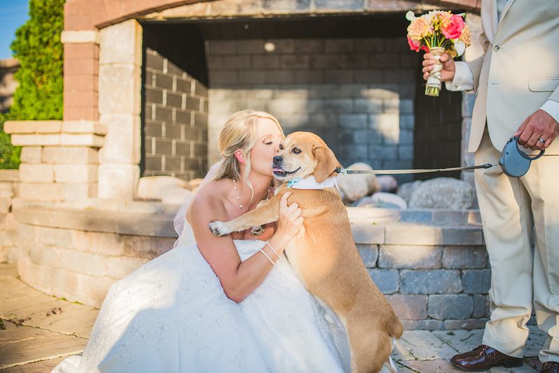 Bride Dog Wedding Portrait Photograph