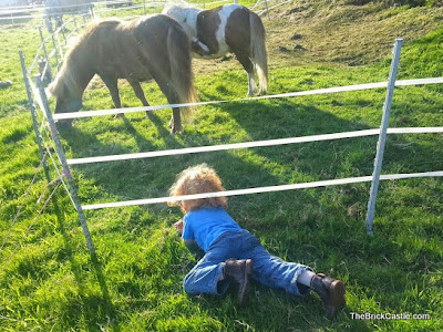 Little boy sneaking under and electric fence