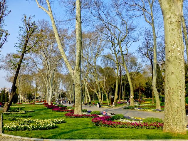 Tulipanes en el Parque Gülhane de Estambul