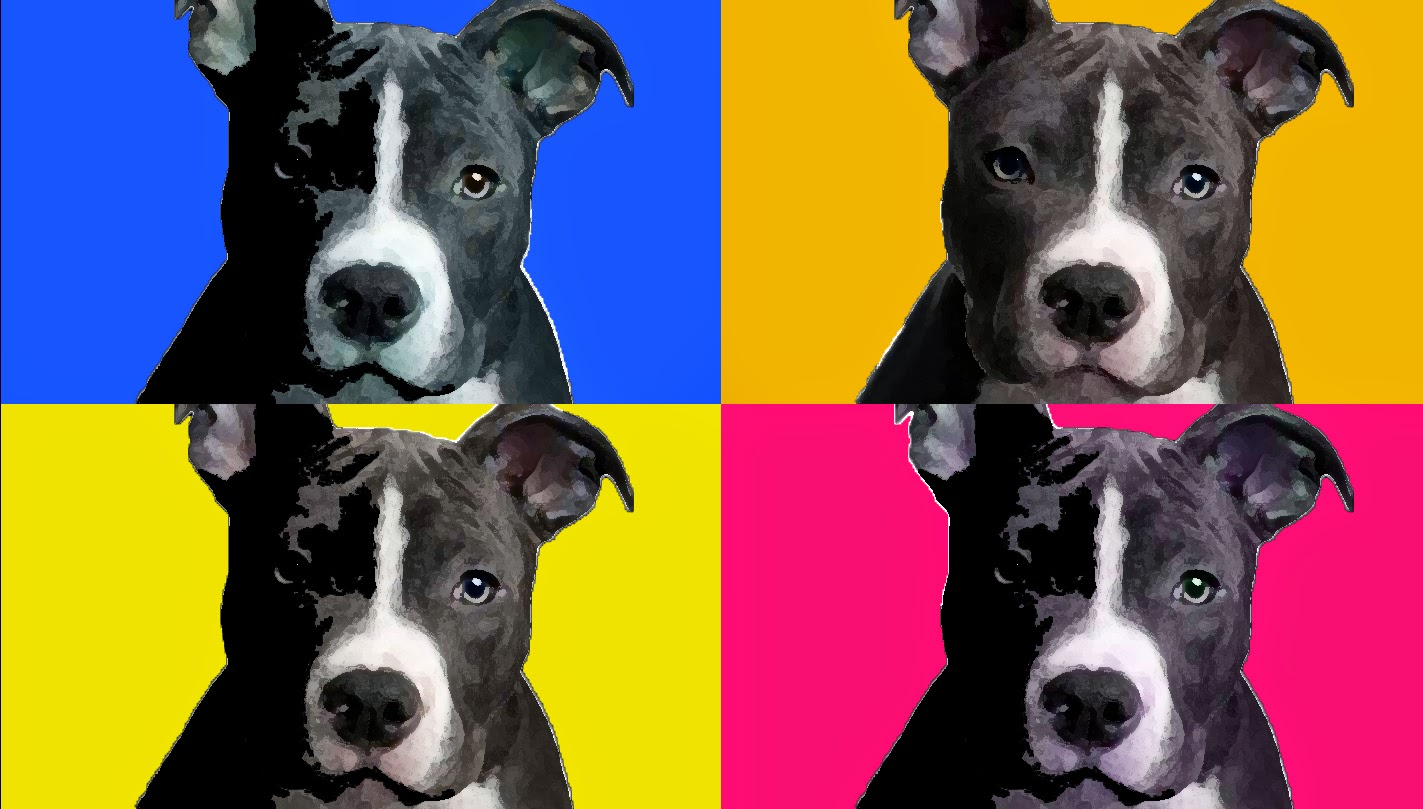 Andrei tiutin photo 1 photoshop tutorials pop art for this photoshop tutorial on pop art i found a picture on the internet of a dog then i selected the dog and added a smoothing effect baditri Gallery