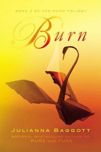 http://1.bp.blogspot.com/-vn5vTV9MXuU/UfRAnPmswjI/AAAAAAAASJE/R-mtvWvoDio/s640/Burn.jpg
