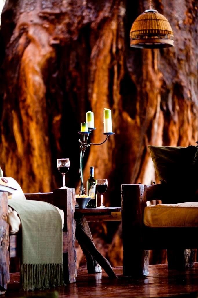 Tangarire Treetops lodge, Tanzania, Afrika, Oost-Afrika, baobab in lounge, baobabs, Afrikaanse lodge, luxe lodge,