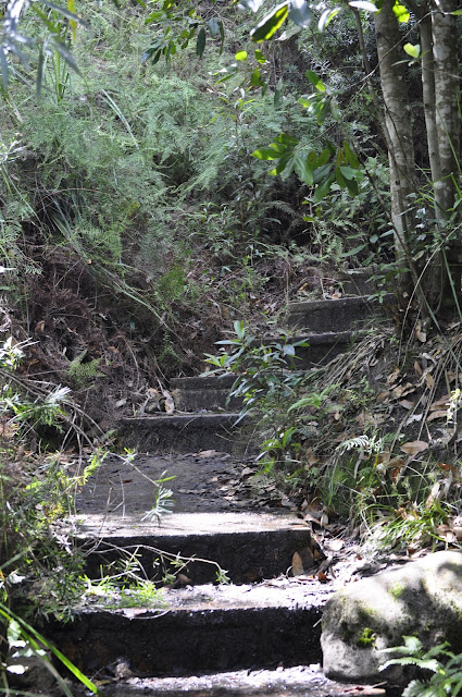 Stairs to Somersby Falls