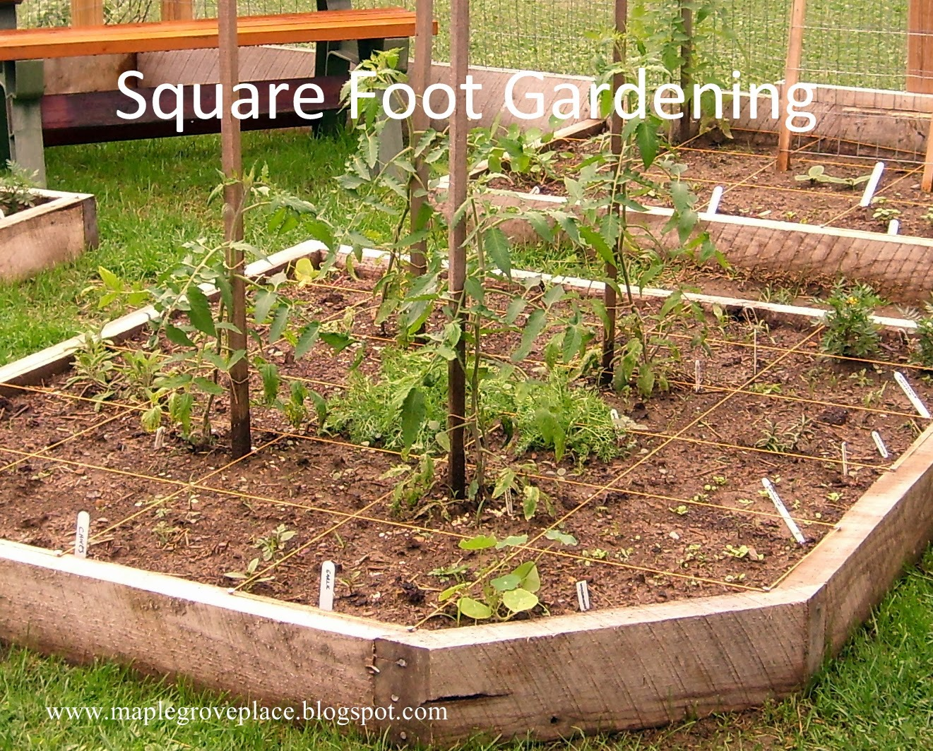 Layout Of Kitchen Garden Watch More Like How Square Foot Gardening