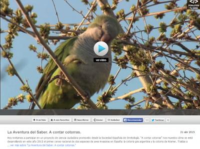 http://www.rtve.es/alacarta/videos/la-aventura-del-saber/aventuracotorras/3099939/