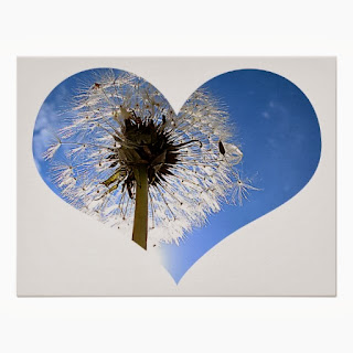 Dandelion puff heart