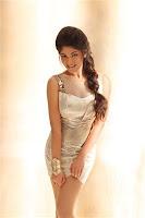Actress Bhanu