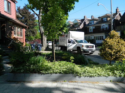 The Pocket garden renovation before Paul Jung Gardening Services Toronto