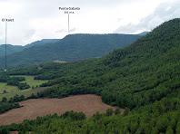 Els boscos de la Solana de Ca l'Alegre