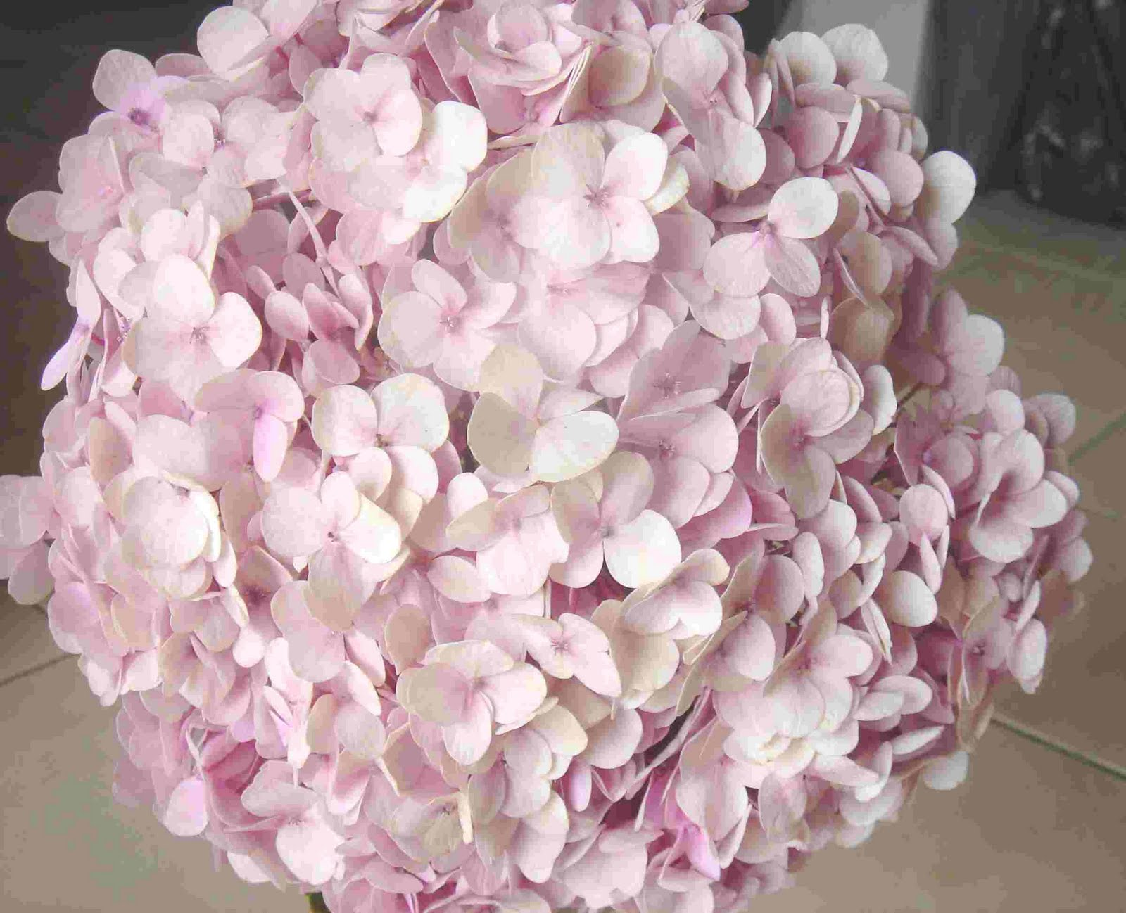 Wedding Flowers Pink Hydrangeas