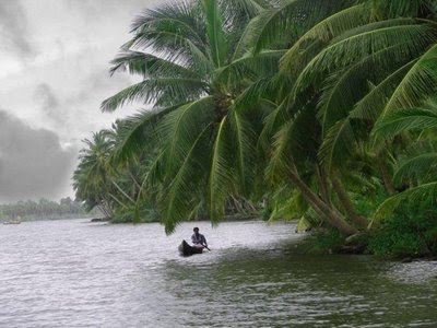 Enjoy the monsoons in Kerala with Kerala Holiday Mart