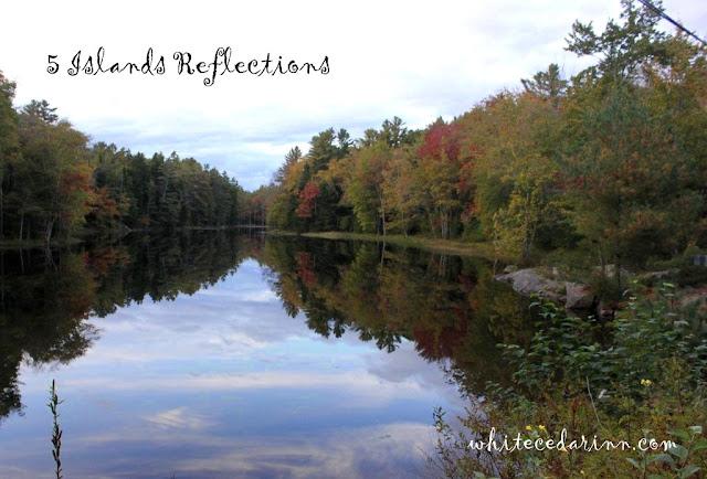 Five Islands Maine foliage