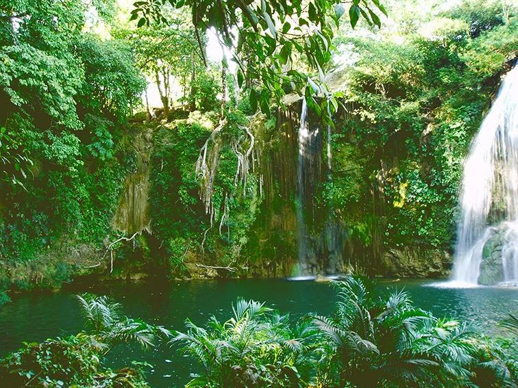 Foto de cascada y lago en bosque tropical