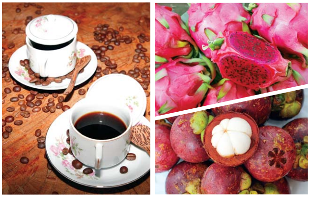 Mangosteen-Dragon-Fruit-Banyuwangi