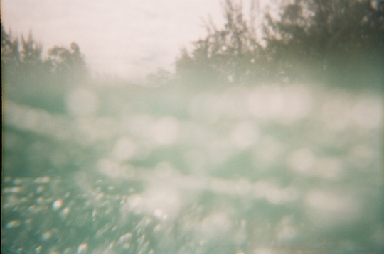 Underwater Photograph with Reusable Lomo Camera In and Out of Water