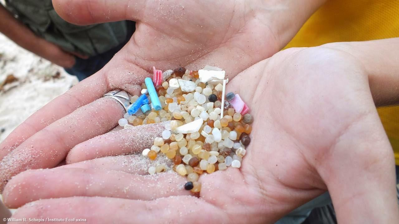 Sem fronteiras: Voluntária exibe pellets coletados na Prainha Branca, localizada na Reserva Ambiental da Serra do Guararu, em Guarujá. Crédito: Instituto EcoFaxina