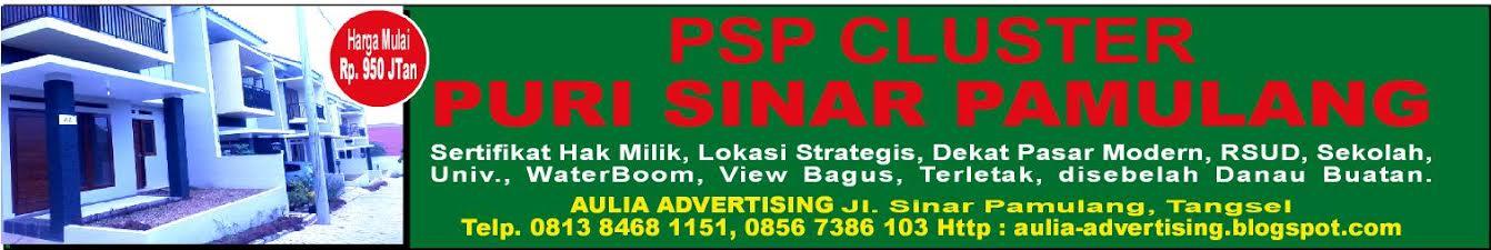 PSP Cluster