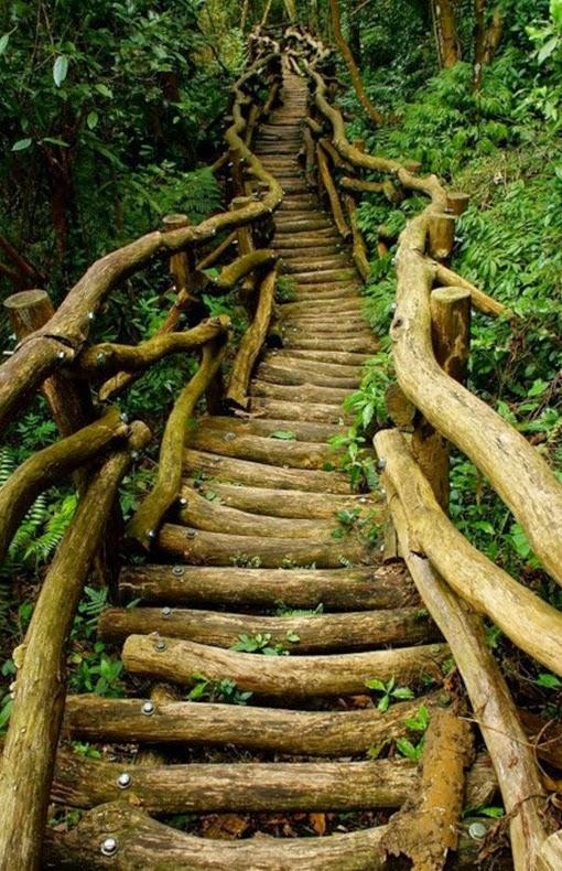 Log Bridge, Taiwan