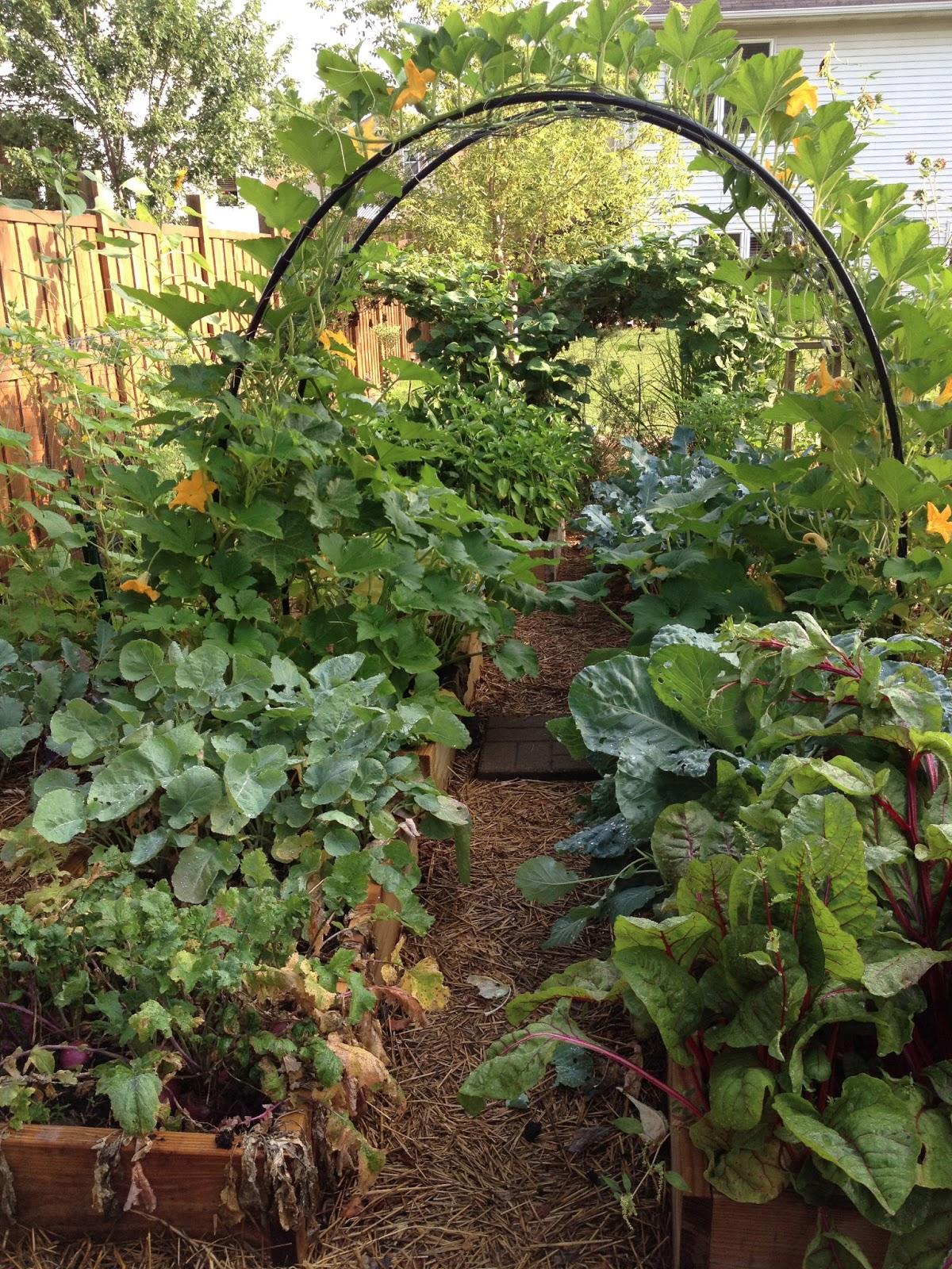 301 moved permanently for Best vegetable garden planner