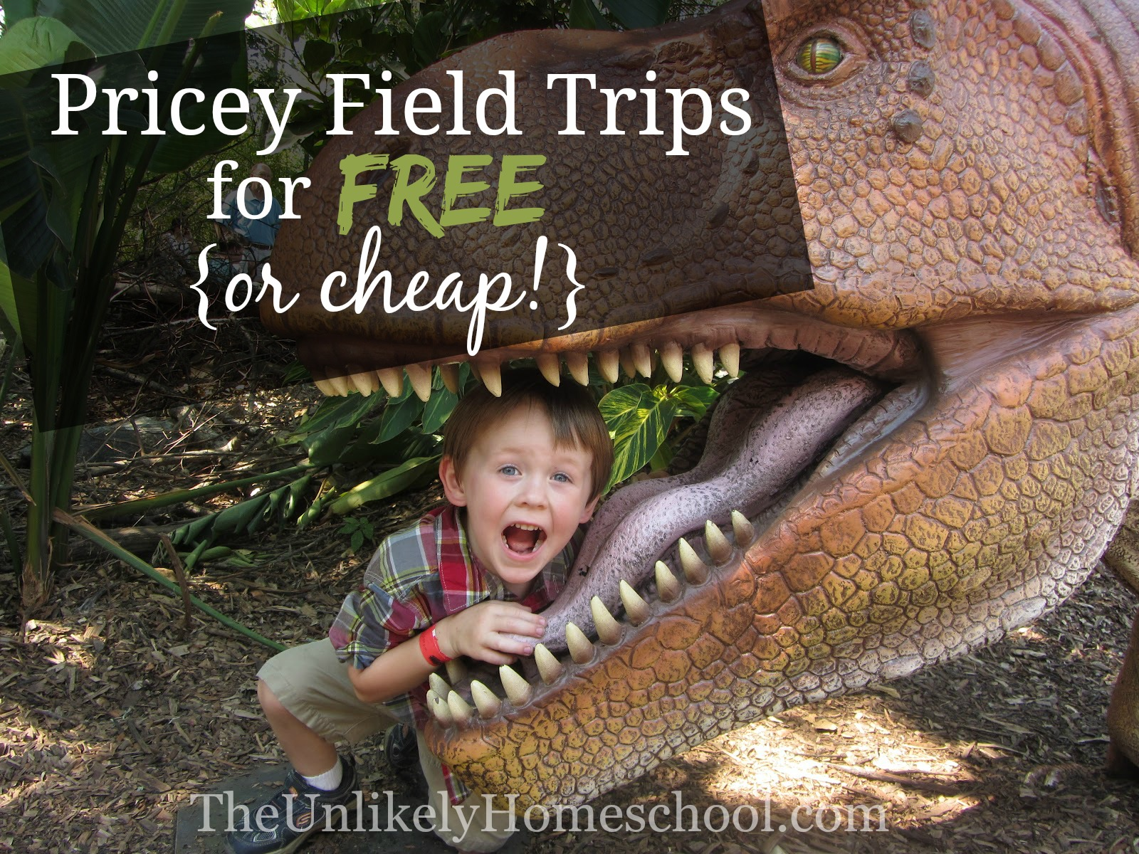 Pricey Field Trips for FREE of Cheap! {The Unlikely Homeschool}