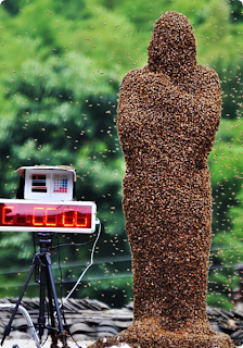 Bee Mans in China