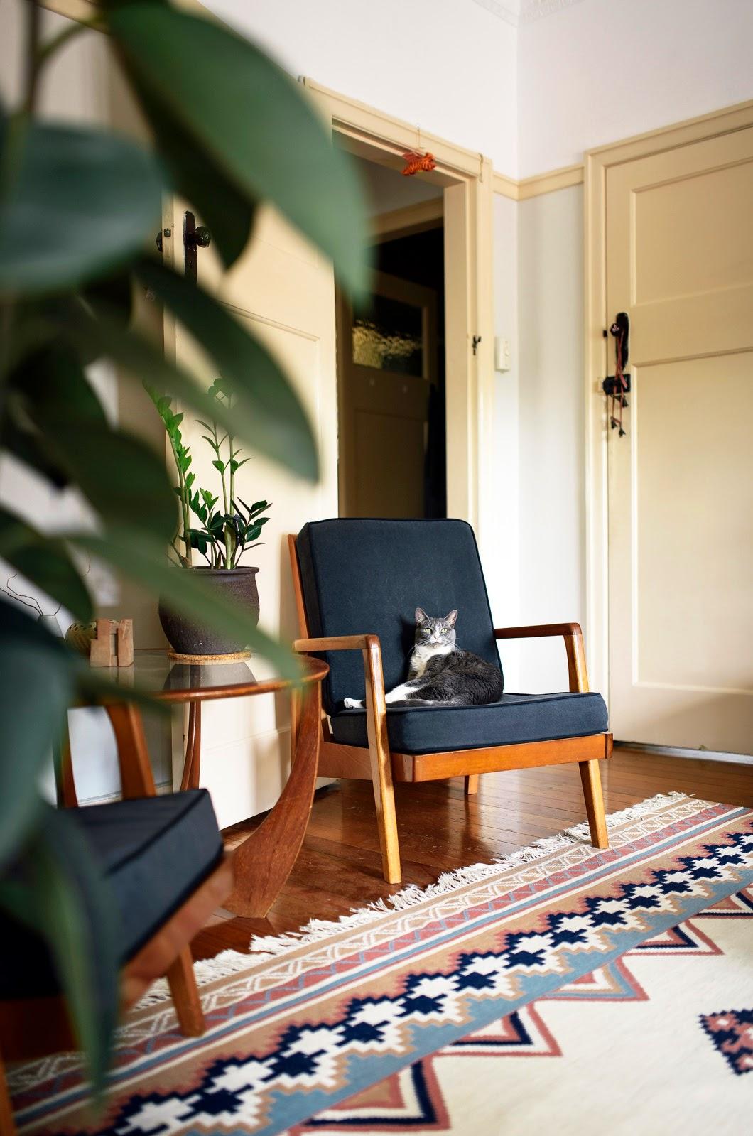 Ecce Home Un Appartamento Espressionista A Brisbane