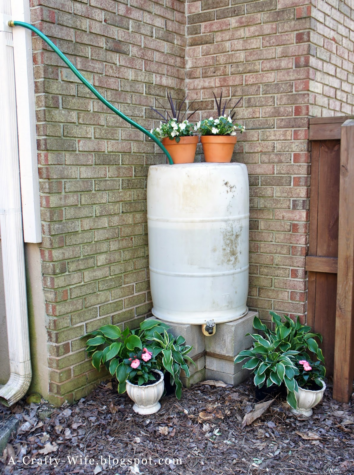 DIY Rain Barrel with no gutter rerouting