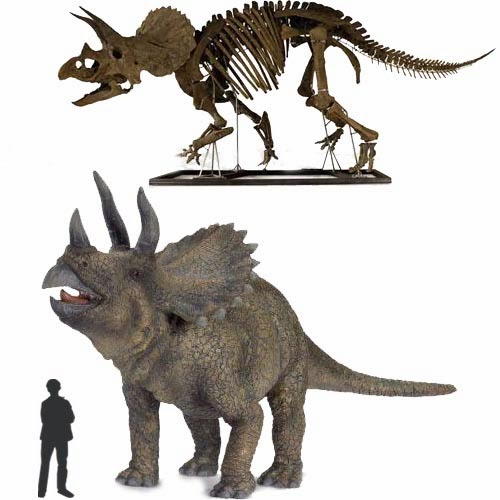 Dinoguía