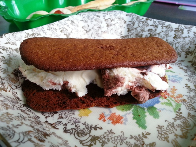 ... Diary of a Food Enthusiast: Ginger Spice Cookie Ice Cream Sandwiches