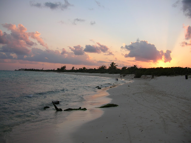 cosa fare a playa del carmen