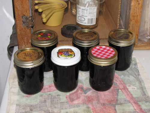 jars of mulberry syrup
