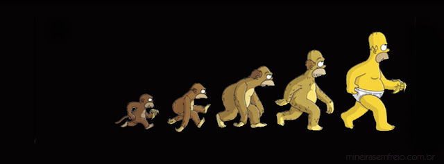 Facebook cover Homer evolution