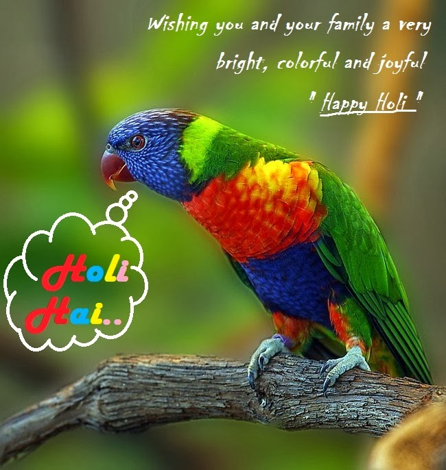 Happy Holi Funny Wallpapers High Definition thumb