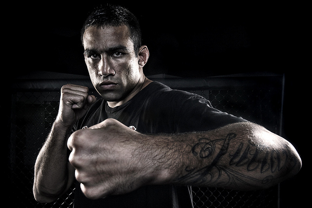 ufc mma heavyweight fighter fabricio werdum picture image