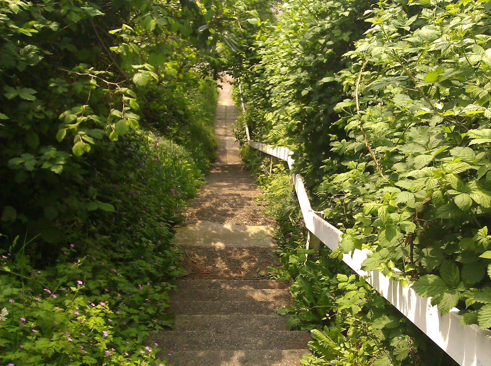 stairs%252Bon%252BGreenwood Mariah Carey (CP)