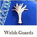 http://queensjewelvault.blogspot.com/2015/04/welsh-guards-badges.html