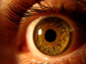 Alergia ocular afeta milhares de pessoas; saiba como evitar