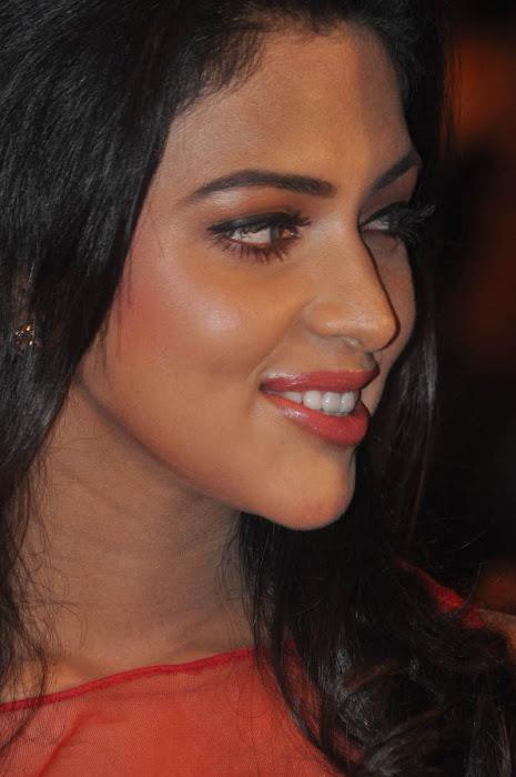 amala paul at naayak audio launch glamour  images