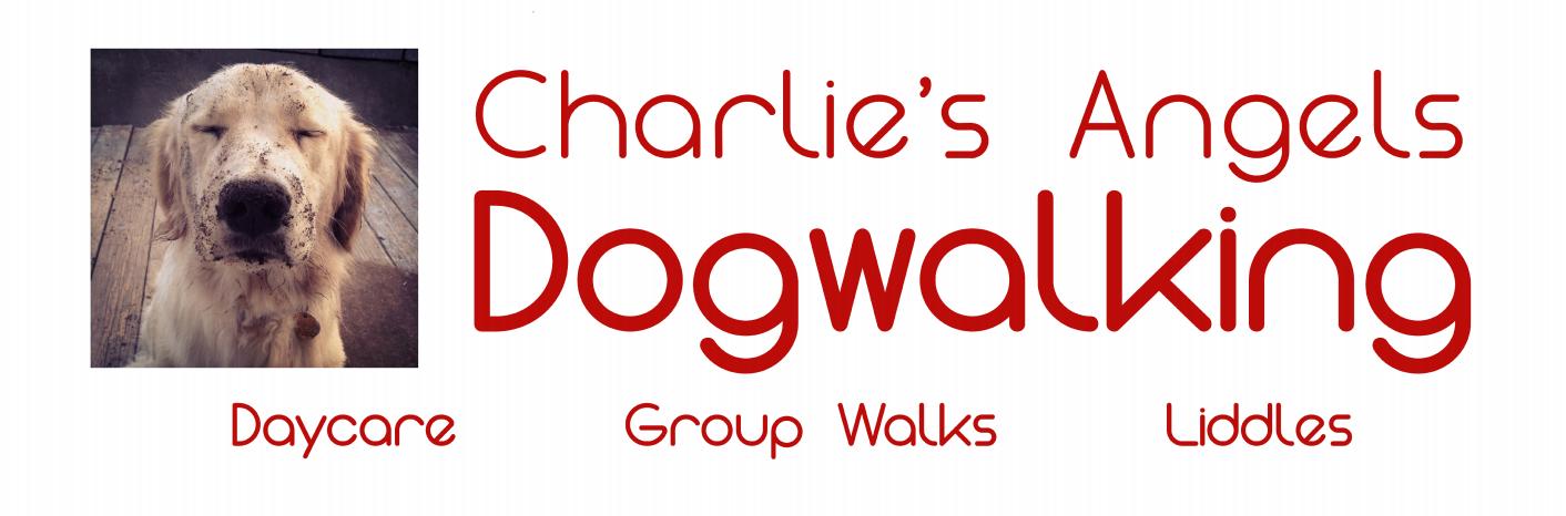 Charlie's Angels Dogwalking Banner | Banners.com