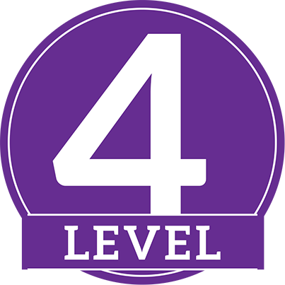 Image result for Level 4