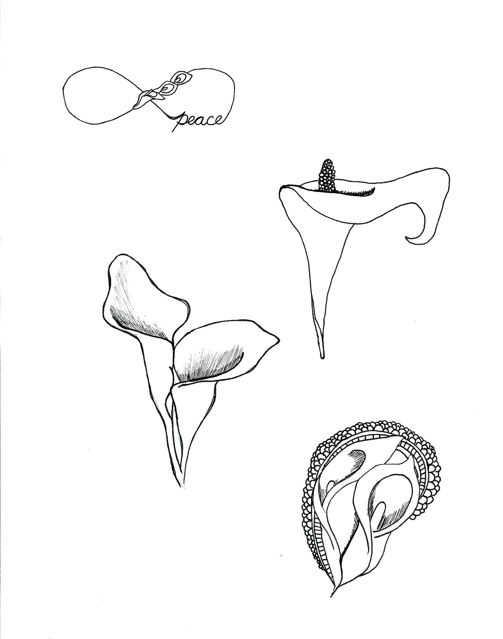 Image search: calla lily tattoos pictures , Lily Tattoos