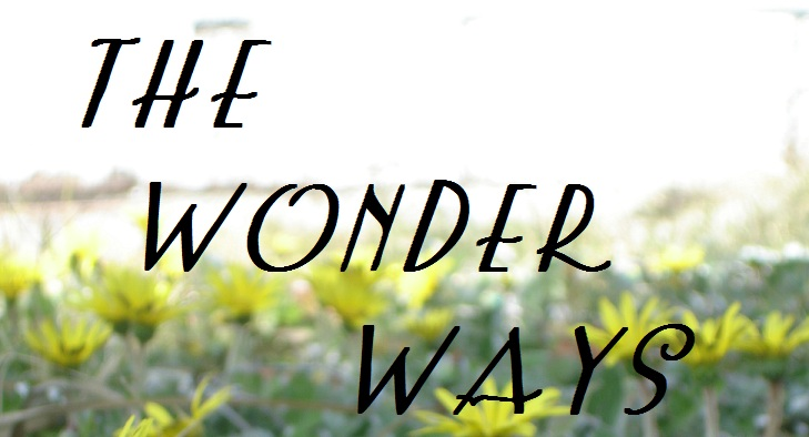 The Wonder Ways