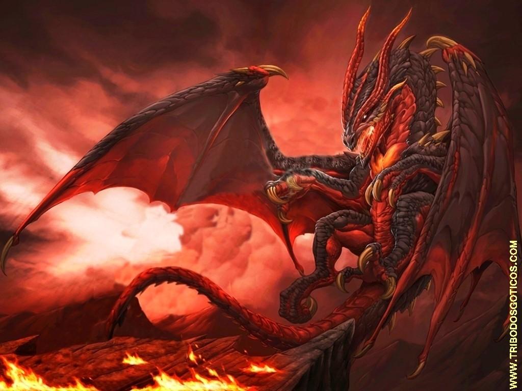 Galeria de fotos e imagens: Desenhos coloridos de Dragon Ball