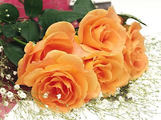 """Предпросмотр - Схема вышивки  """"Букет роз """" - Схемы автора  """"malaua79 """" - Вышивка крестом."""