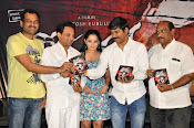 Meera Movie Audio release function photos-thumbnail-9