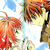 Tsubasa: Reservoir Chronicle [Manga]