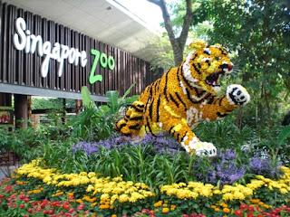 tempat wisata di singapore untuk anak, kebun binatang,