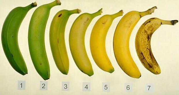 هل تعلم ماهي أحسن موزة من هذه السبعة لصحتك؟